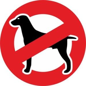 Was spricht gegen einen Hund?