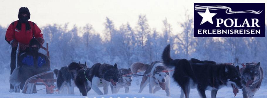 Husky Touren in der Arktis mit Polar Erlebnisreisen