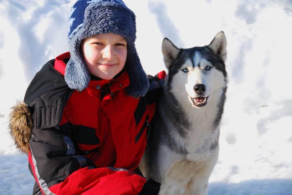 Husky mit kleinem Jungen im Schnee