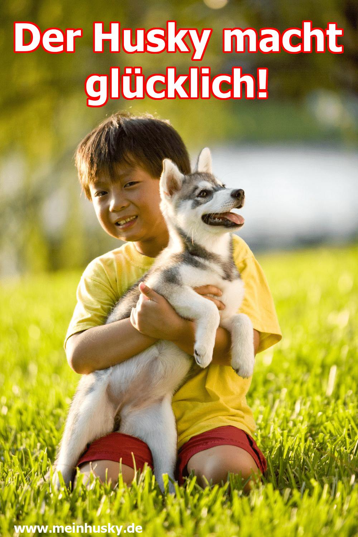 Ein Junge umarmt glücklich seinen Husky