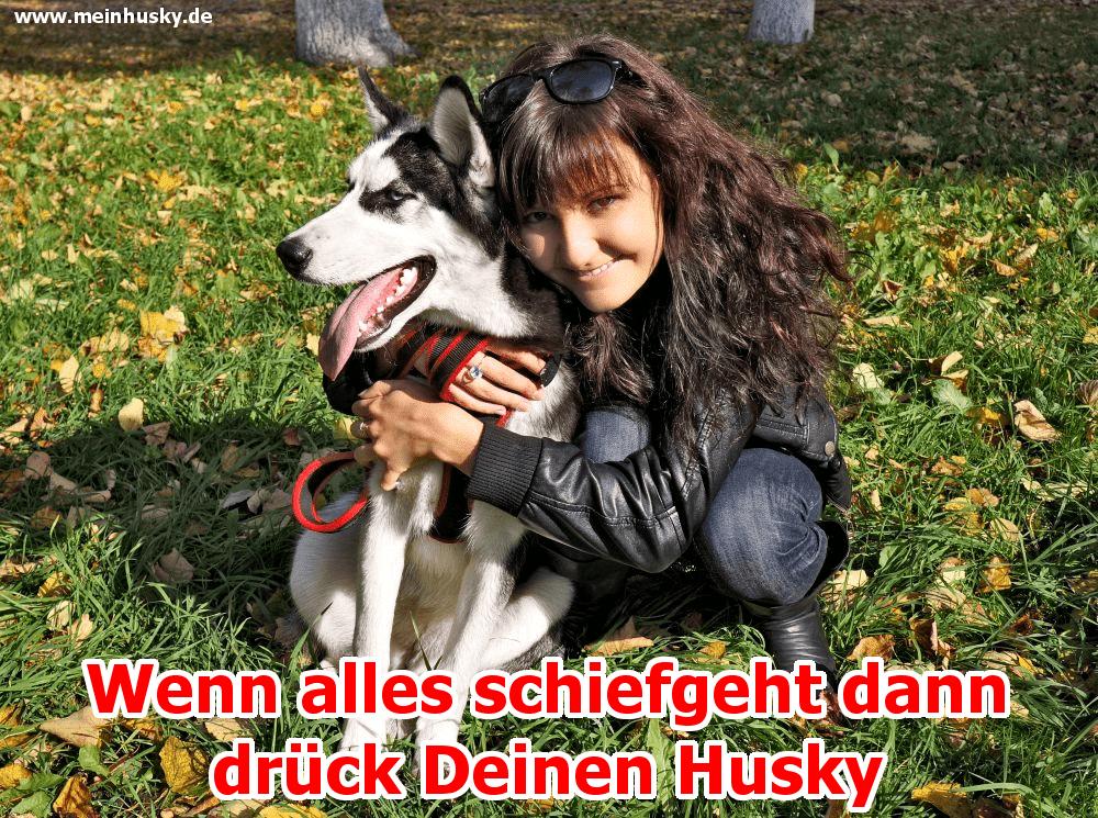 Eine Frau umarmt sie Husky