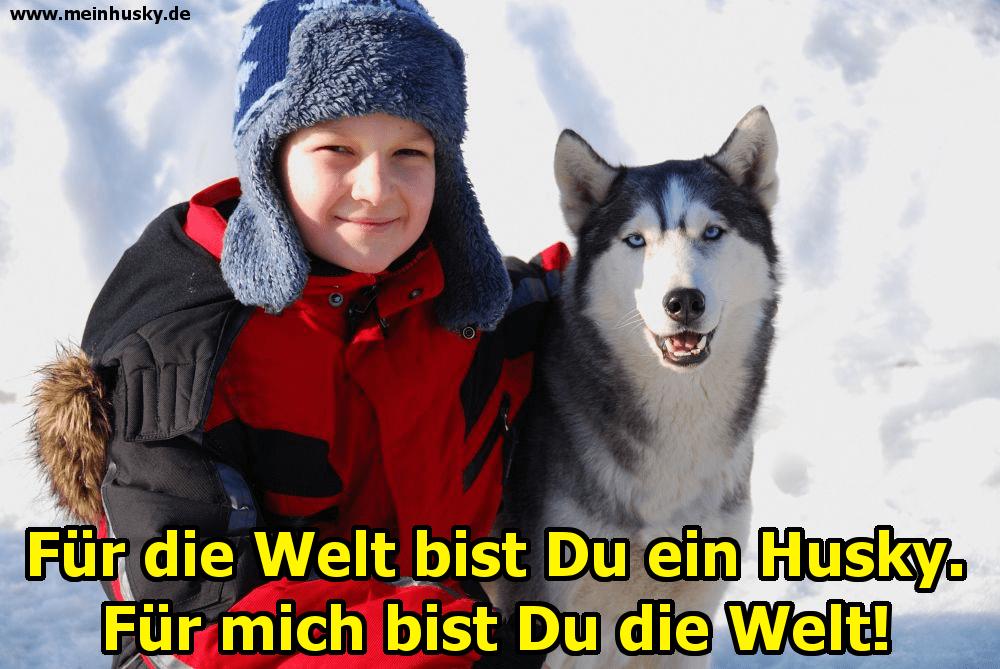 Ein Junge umarmt seinen Husky im Schnee