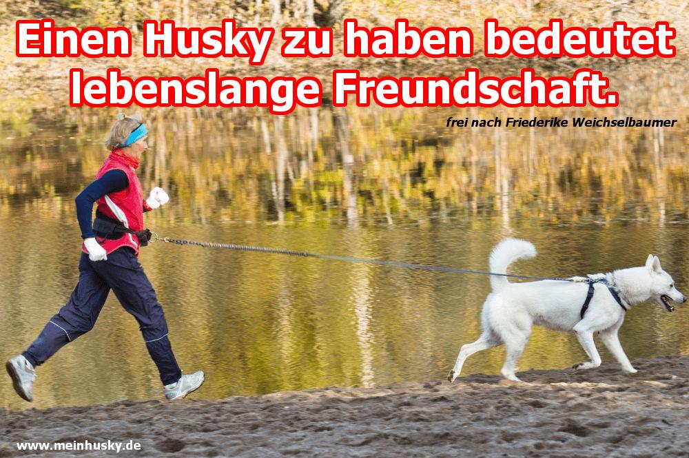 Eine Frau, die mit ihrem Husky joggt